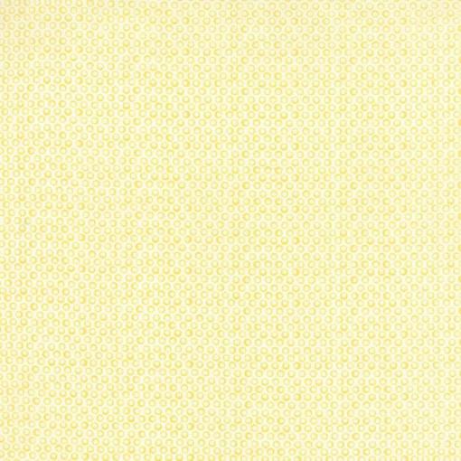 Moda Fabrics 24032-15