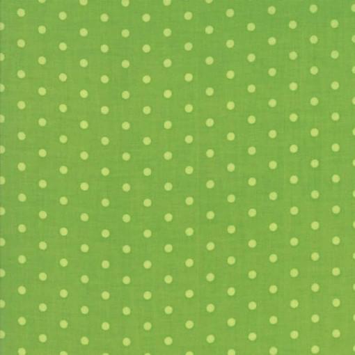 Moda Fabrics Caravan Roundup 11645 17