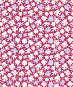 Pompom Raspberry_100107.jpg
