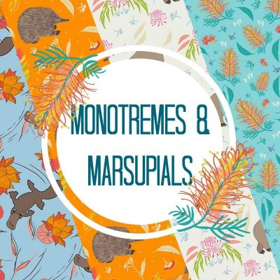 Monotremes & Marsupials by Amanda Brandl
