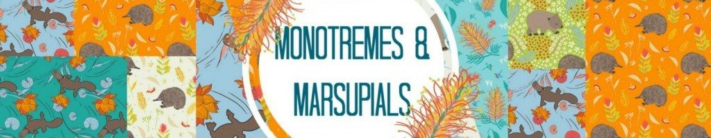 Marsupials and Monotremes by Amanda Brandl
